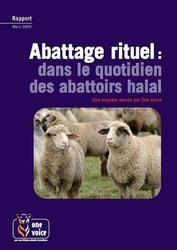 Large medium small thumb abattage rituel dans le quotidien des abattoirs halal
