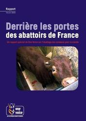 Large medium small thumb derriere les portes des abattoirs de france