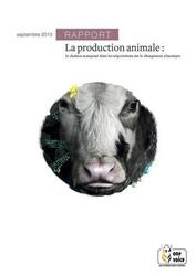 Large medium small thumb la production animale le chainon manquant
