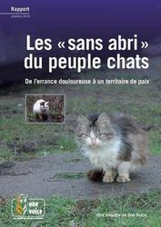 Large medium small thumb les sans abri du peuple chats