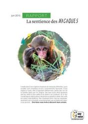 Large medium small thumb la sentience des macaques