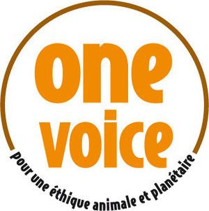 large_medium_small_logo_label_onevoice_o